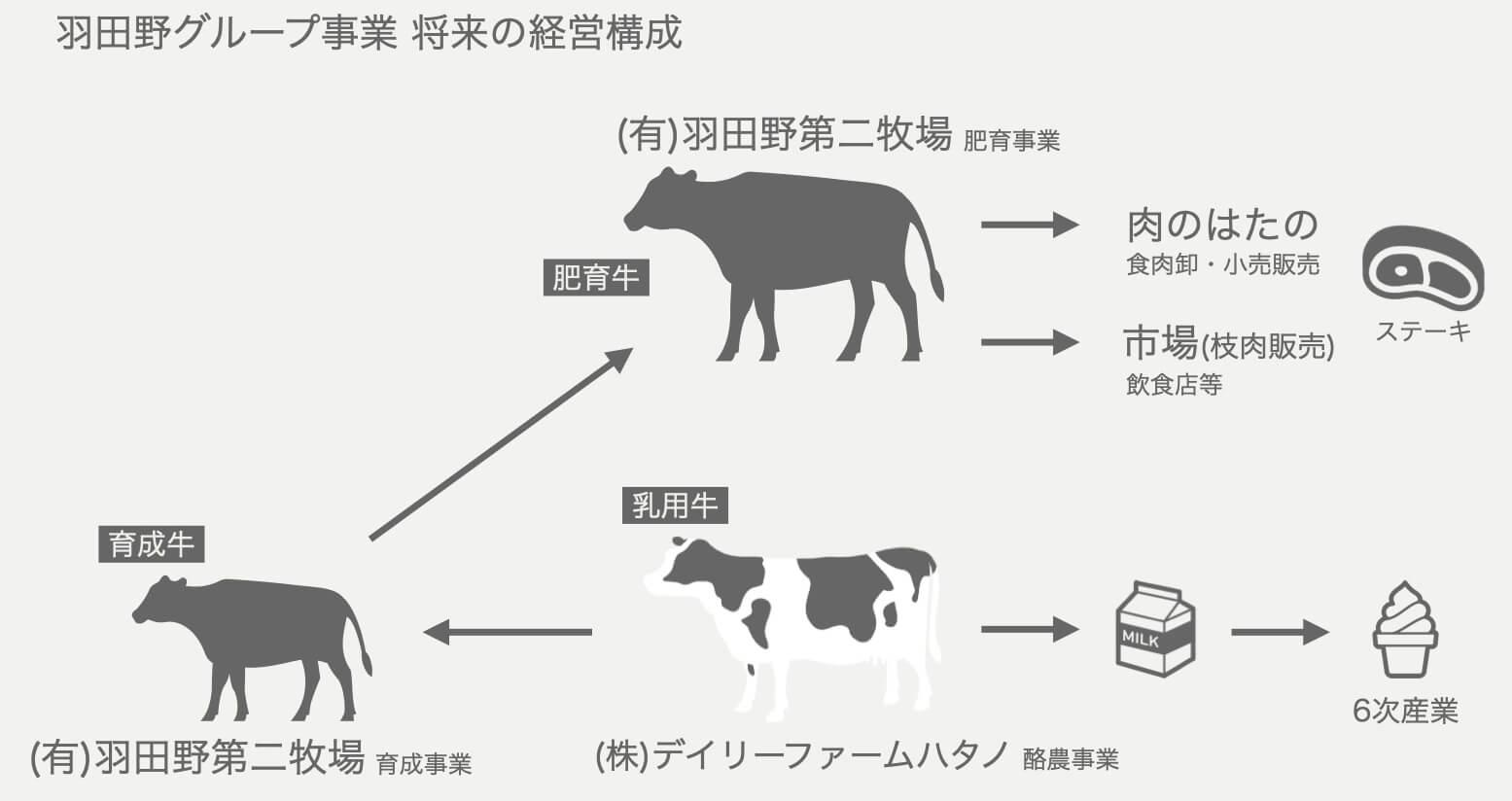 羽田野第2牧場経営構成